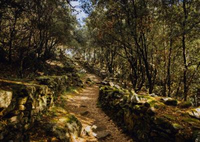 Dans le Haut-Languedoc